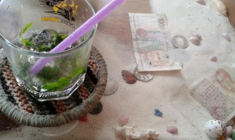 Mojito Money