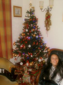 Christmas Tree Troll