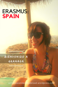 Bienvenido a Granada